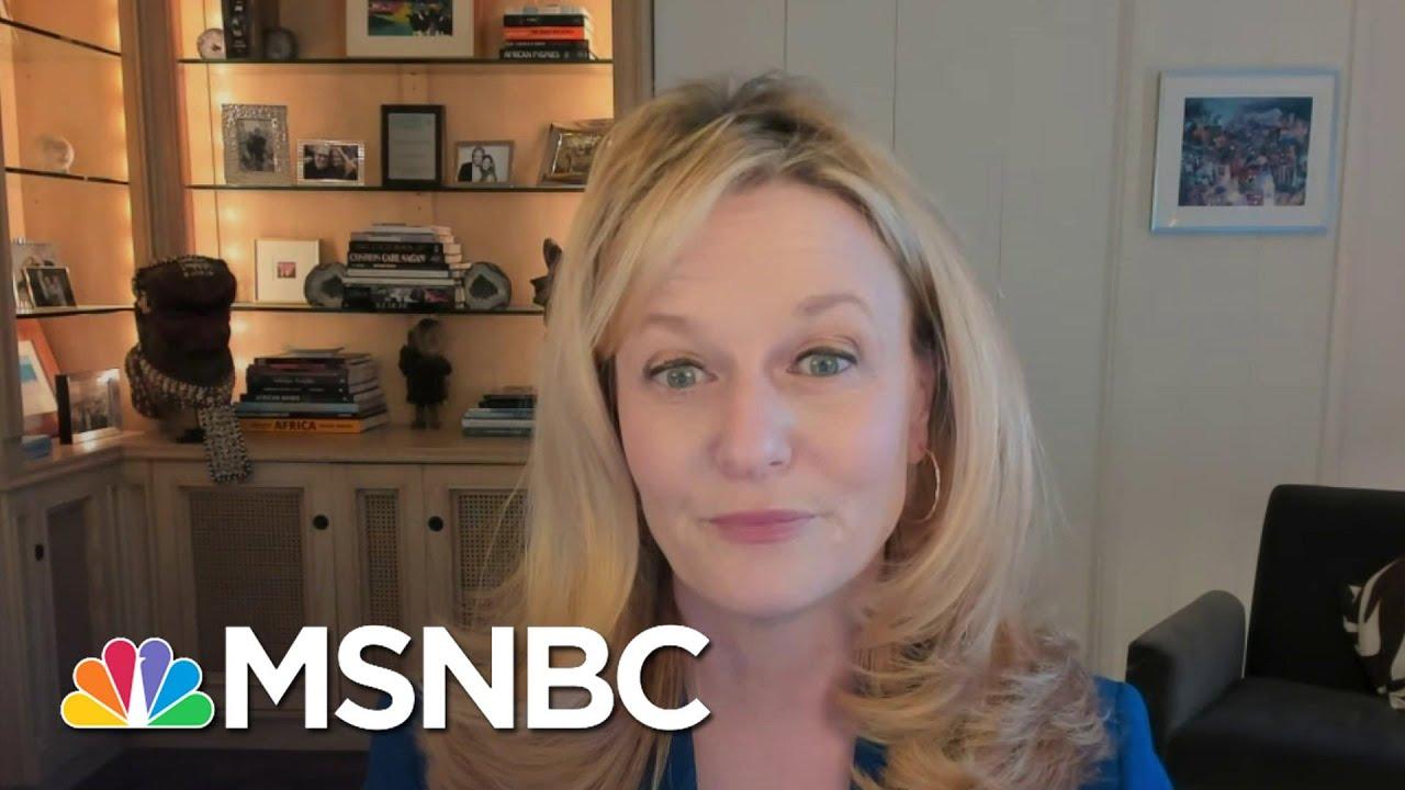 UCLA Epidemiologist Is Optimistic About Biden's Covid Response | Deadline | MSNBC 1