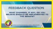 TVJ News: Feedback Question - December 8 2020 5