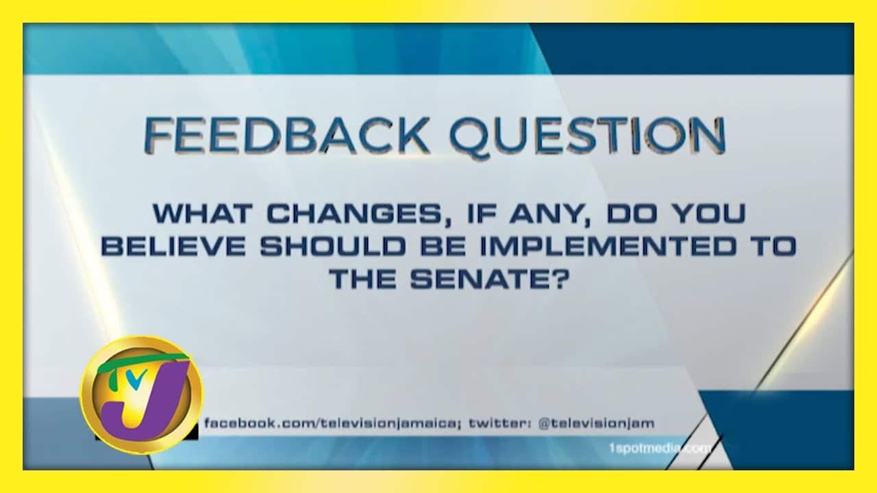 TVJ News: Feedback Question - December 8 2020 1