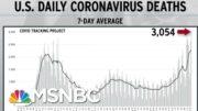 Among The Deadliest Days In U.S. History: Wednesday | Rachel Maddow | MSNBC 2