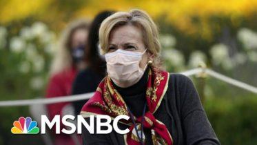 Coronavirus Response Coordinator Dr. Birx Seeks Biden Administration Role | Ayman Mohyeldin | MSNBC 6