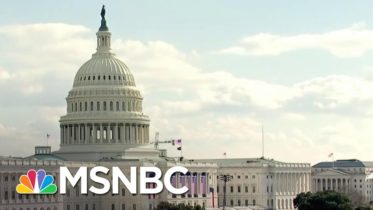Beschloss: If This Looked Like A Normal Inauguration, We'd Wonder 'What Was Going Wrong' | MSNBC 6