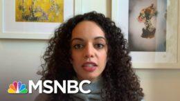 Biden Unveils Sweeping Immigration Reform Plan | Ayman Mohyeldin | MSNBC 5