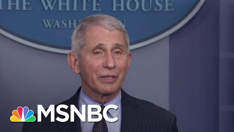 Dr. Fauci Says He Now Feels Liberated To Speak Freely On Science, Pandemic   The ReidOut   MSNBC 1