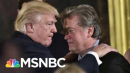 Fleece Trump's Own Supporters? He'll Pardon You | All In | MSNBC 5