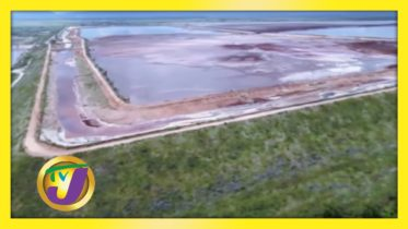 Pros & Cons of Bauxite Sector in Jamaica: TVJ All Angles - January 20 2021 6