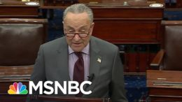 Schumer Announces Article Of Impeachment Against Trump Will Be Delivered To Senate On Monday | MSNBC 8