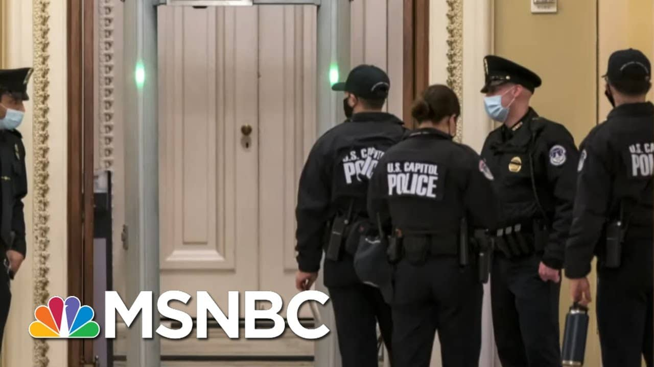 Republican Congressman Caught Trying To Carry Gun Onto House Floor | All In | MSNBC 1