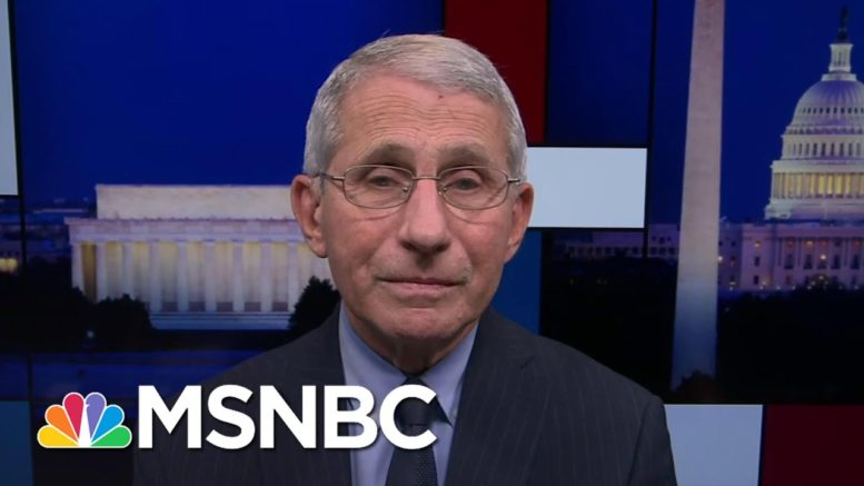 Dr. Fauci Actively Studying Lingering Effects Of Covid-19 | Rachel Maddow | MSNBC 1