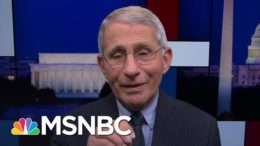 Fauci: Scientists Working On Therapies To Make Covid-19 Less Deadly | Rachel Maddow | MSNBC 9