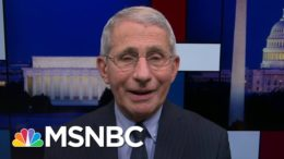 Fauci: Single Dose Vaccine Likely Only Two Weeks Away From FDA Application | Rachel Maddow | MSNBC 8