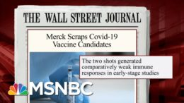 Merck Discontinues Development Of Vaccine Candidates | Morning Joe | MSNBC 7