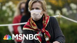 Fmr. Covid Task Force Advisor: I Was Told To 'Watch' Dr. Birx | All In | MSNBC 7