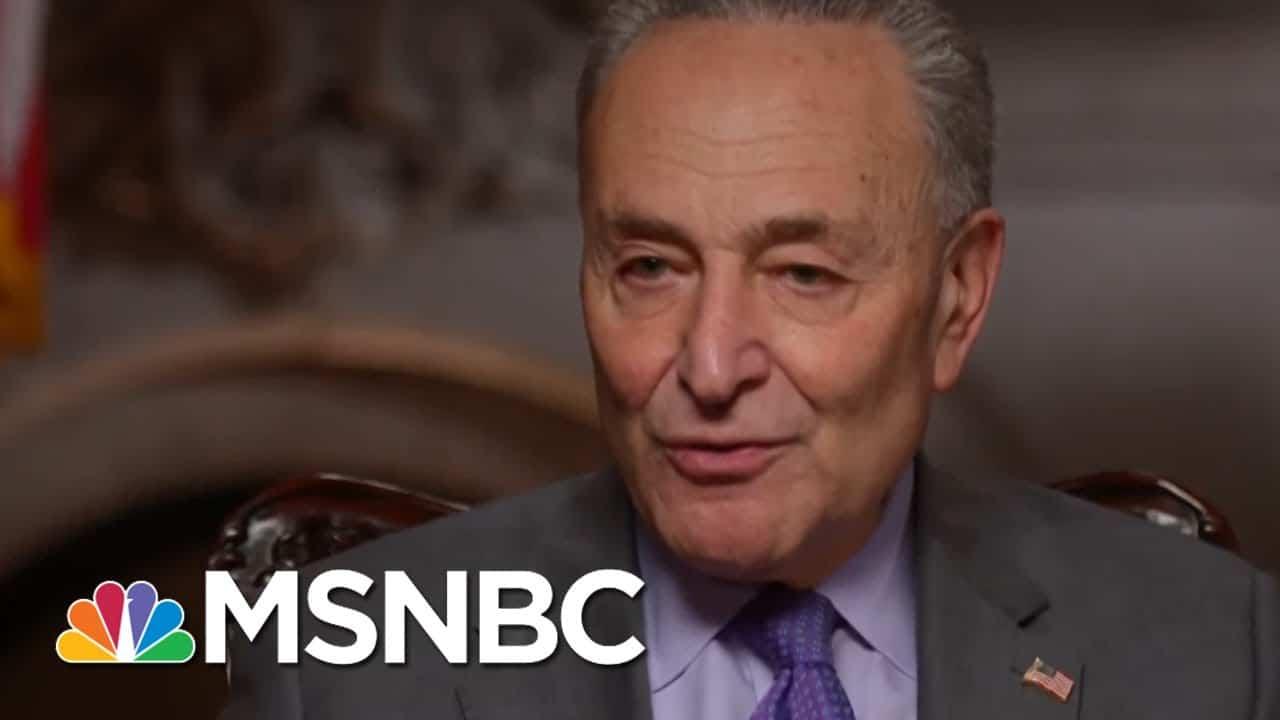 Schumer Calls On President Biden To Declare 'Climate Emergency' | Rachel Maddow | MSNBC 8
