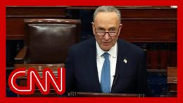 Schumer: Sad that accepting election result is an act of courage 8