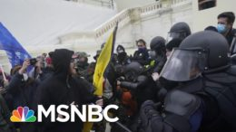 Wallace: Former National Security Officials Call On Trump: 'Make It Stop'   MSNBC 4