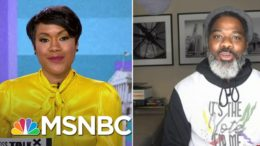 Shifting Demographics Reveal New South, As Activists Turn Out Voters Of Color | MSNBC 9