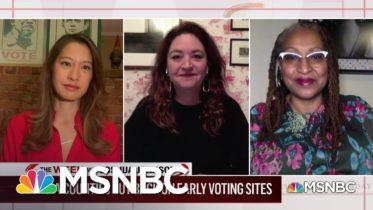 The Fight Against Voter Suppression in Georgia | MSNBC 6