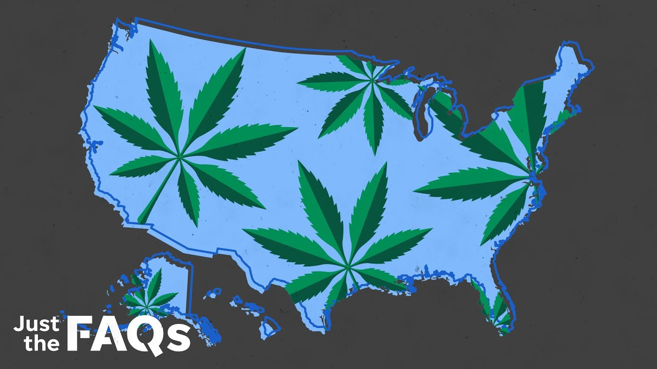 Marijuana: Why the drug became illegal, and the future of legalization   USA TODAY 1