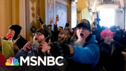Beschloss: This Was A Terrorist Attack Initiated By Trump | The 11th Hour | MSNBC 6