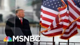 Trump Issues Statement Saying There Will Be 'Orderly' Transition Of Power On January 20' | MSNBC 3
