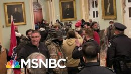 Stavridis: 'Of Course' This Was Insurrection Against The Government | Morning Joe | MSNBC 2
