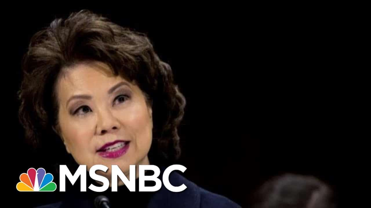Transportation Secretary Elaine Chao Resigns | MTP Daily | MSNBC 1