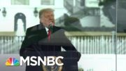 WSJ Editorial Board Calls On Trump To Resign | The ReidOut | MSNBC 4