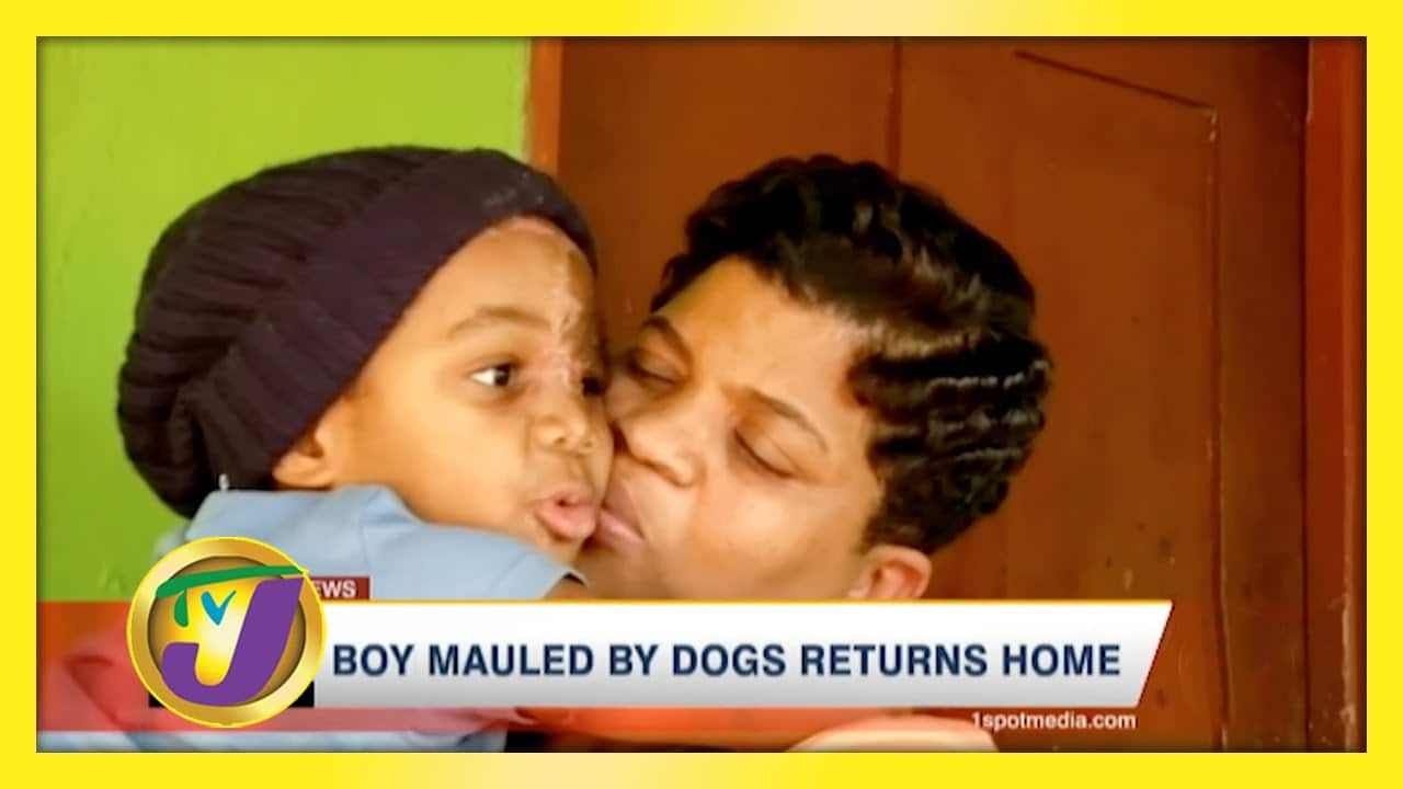 Boy Mauled by Dogs Returned Home - January 7 2021 1