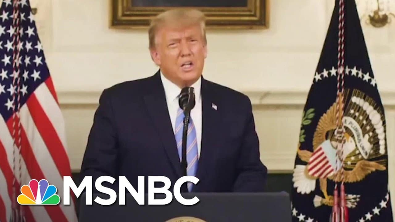 Trump Pressured GA Elections Investigator To 'Find The Fraud' In Separate Call | MSNBC 1
