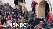 FBI Memo Warns Of Threats Of Possible Armed Protests At 50 State Capitols | MTP Daily | MSNBC 4