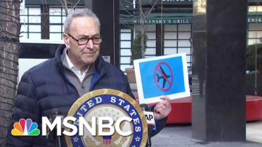 Schumer Calls For Capitol Rioters To Be Added To The 'No-Fly' List | MSNBC 6