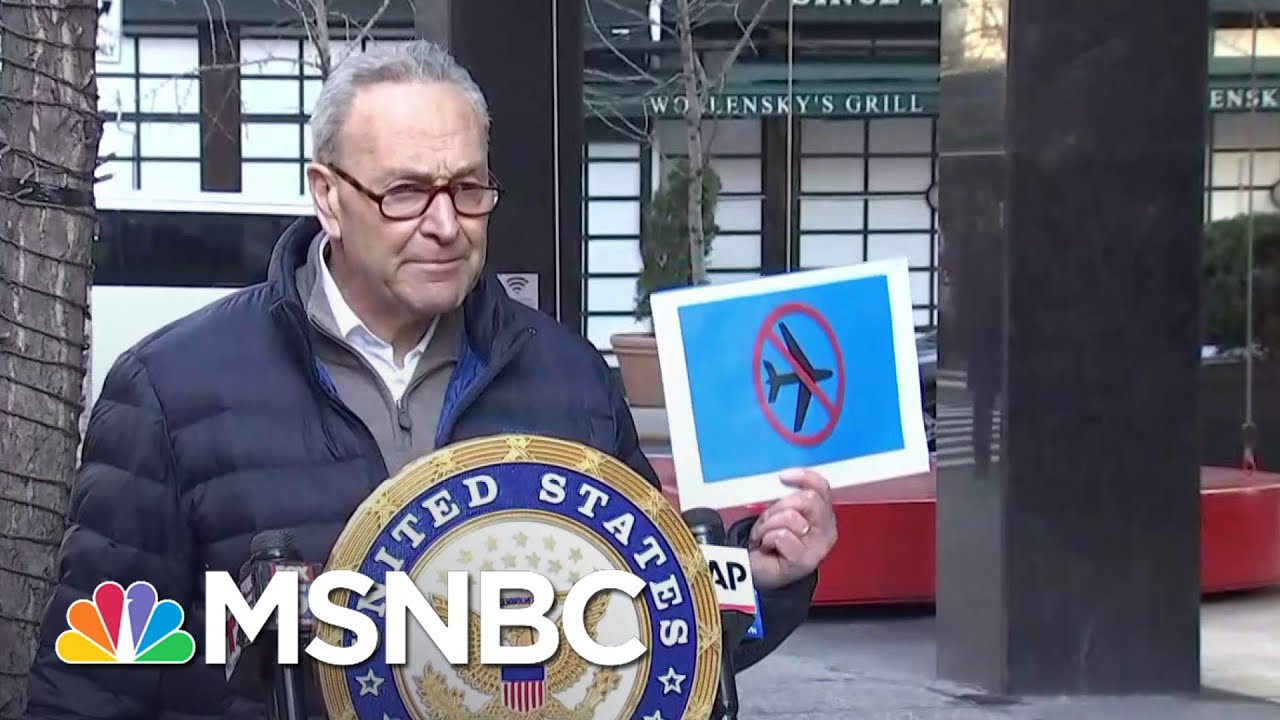 Schumer Calls For Capitol Rioters To Be Added To The 'No-Fly' List | MSNBC 1