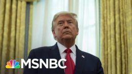 Trump Makes History As Only President Twice Impeached | The 11th Hour | MSNBC 9