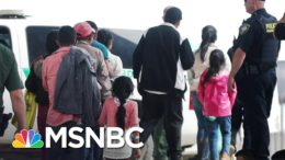 DOJ Official Blames Trump Administration For Separation Policy At Border | Andrea Mitchell | MSNBC 3