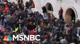 Historian Of Fascism Timothy Snyder Warns Of Trump's Damage To Democracy | Andrea Mitchell | MSNBC 2