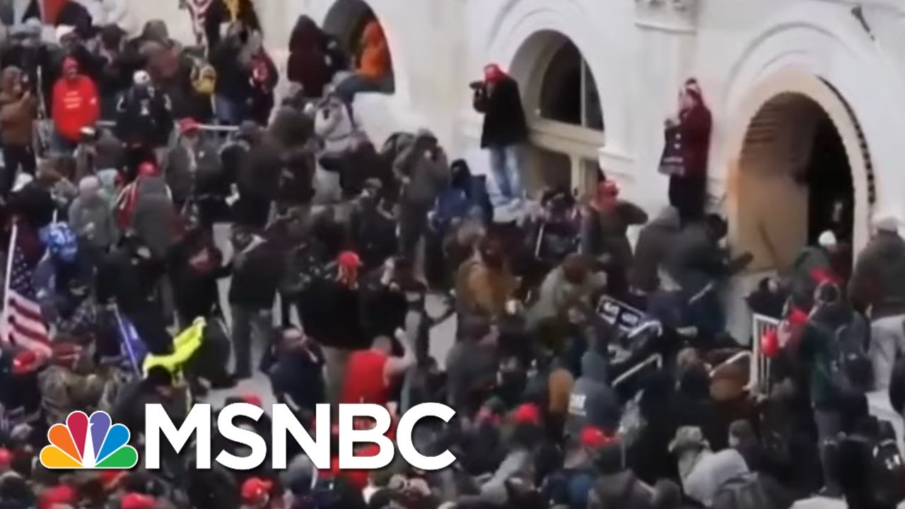 Historian Of Fascism Timothy Snyder Warns Of Trump's Damage To Democracy | Andrea Mitchell | MSNBC 1