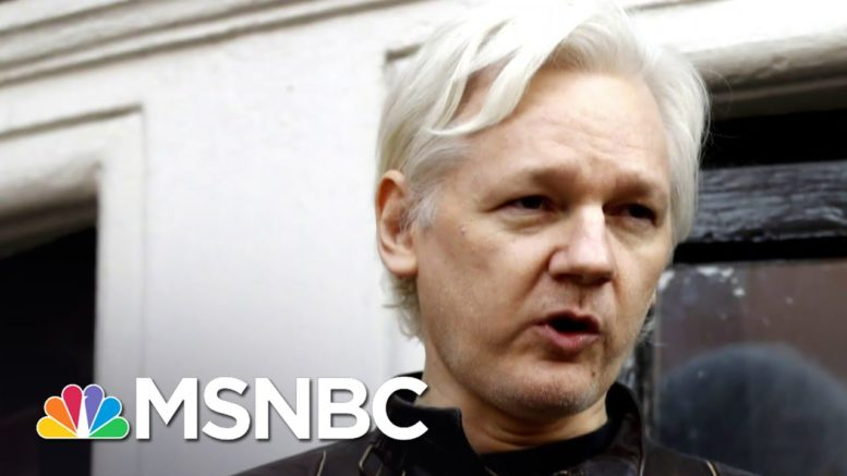 British Court Rules Julian Assange Cannot Be Extradited To U.S. Due To Mental Health | MSNBC 1