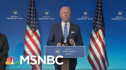 Dr. Vin Gupta Calls Biden's Covid-19 Relief Plan 'The Type Of Think Big, Disaster Mindset' We Need 1