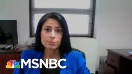 Michigan AG: 'Have To Do Better To Protect The Seat Of Government' In The State | MTP Daily | MSNBC 1