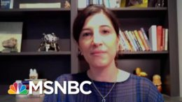 How Sustained Online Falsehoods Helped Fuel The January 6 Capitol Attack | MTP Daily | MSNBC 9
