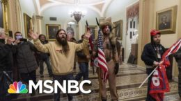 Lawyer For Capitol Rioter Appeals For A Pardon From President Trump | Ayman Mohyeldin | MSNBC 8