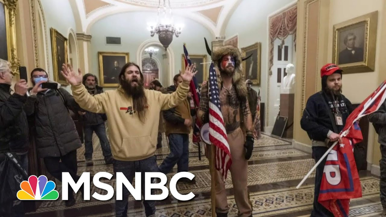 Lawyer For Capitol Rioter Appeals For A Pardon From President Trump   Ayman Mohyeldin   MSNBC 1