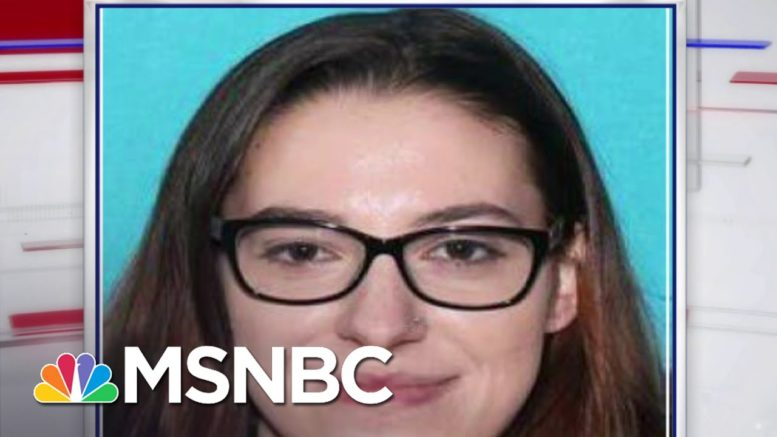 FBI Reports Woman Intended To Ship Pelosi's Office Computer To Russia   Craig Melvin   MSNBC 1
