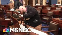'Galvanizing Moment': How Domestic Extremists View January 6 | MTP Daily | MSNBC 8