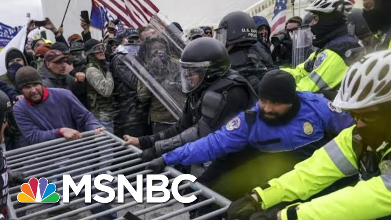 After Trump, Preventing Future Danger To The Republic | Morning Joe | MSNBC 1