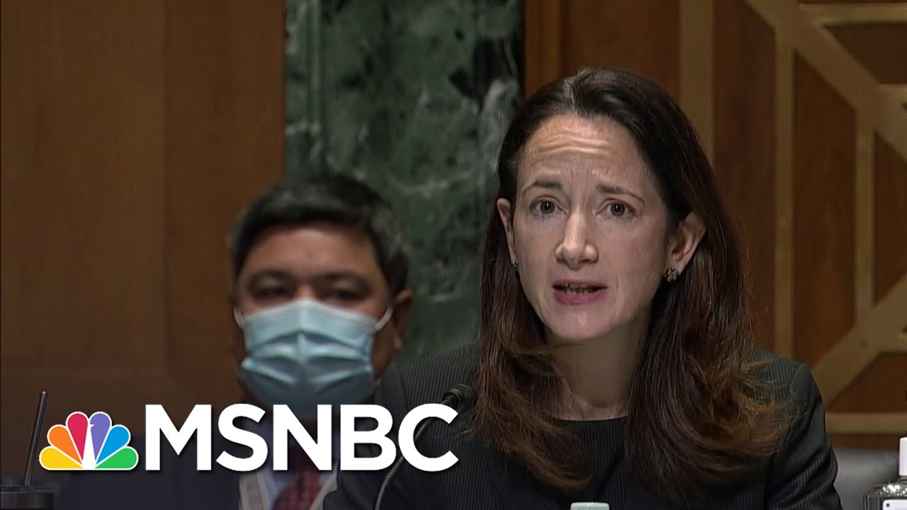 DNI Nominee Avril Haines: DNI Is 'No Place For Politics Ever' | Andrea Mitchell | MSNBC 6