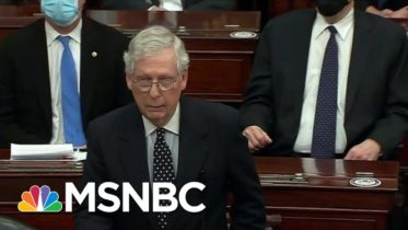 'Fed lies!': Juror McConnell Pins MAGA Riots On Trump, With A Catch   The Beat With Ari Melber 6
