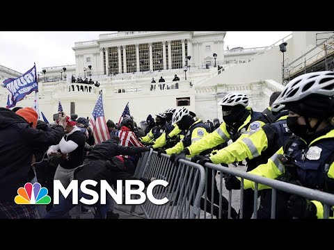 Backers Of 'Law & Order President' Attacked Capitol Police | The 11th Hour | MSNBC 1