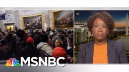 What does race have to do with it? | Joy Reid | MSNBC 2